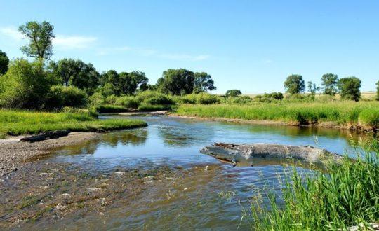 Tierney River Ranch