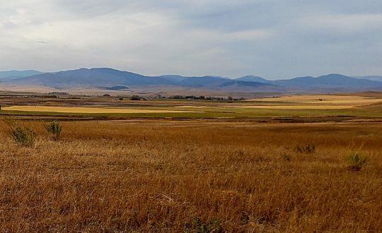 Central Montana Parcels
