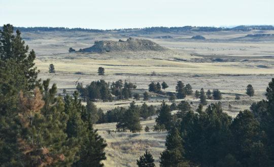 Big Sage Ranch