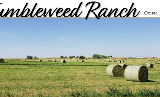 Tumbleweed Ranch